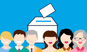 Derechos políticos y observación electoral.